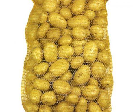 Ramassage et vente pommes de terre pour Zoodo